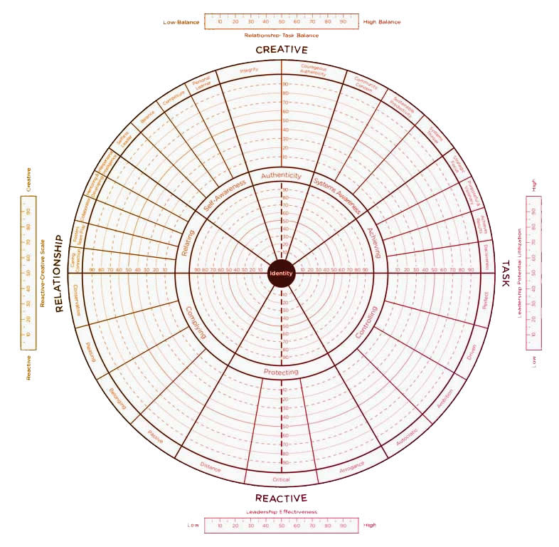 Leadership Circle Profile